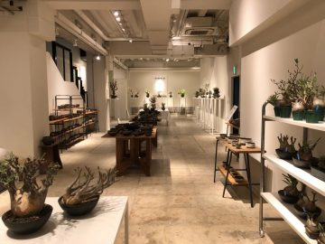TRUNK WARE  EXHIBITION VOL.1